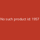 THE STONE - Golet LP