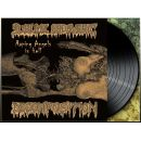 SUBLIME CADAVERIC DECOMPOSITION - Raping Angels In Hell LP